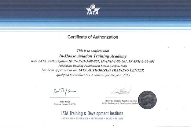 Inhouse Aviation Academy